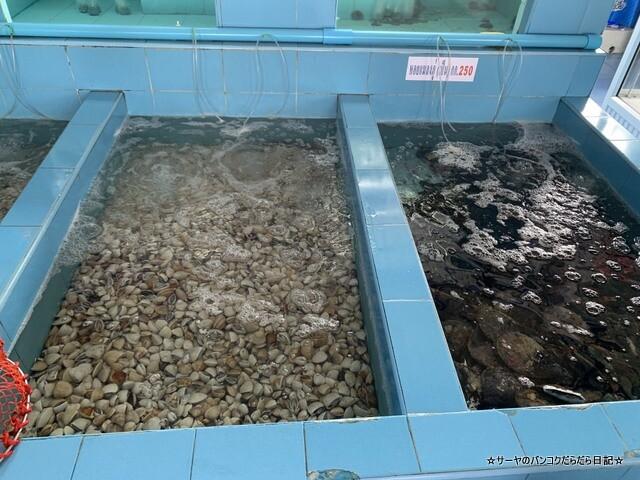 Preecha Seafood プリチャーシーフード (10)