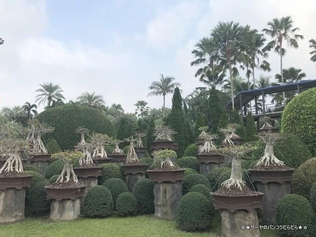 ノンヌットトロピカル Nong Nooch Tropical パタヤ 観光 (6)