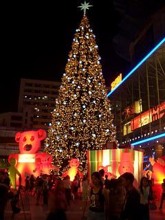 20061228 クリスマス 4
