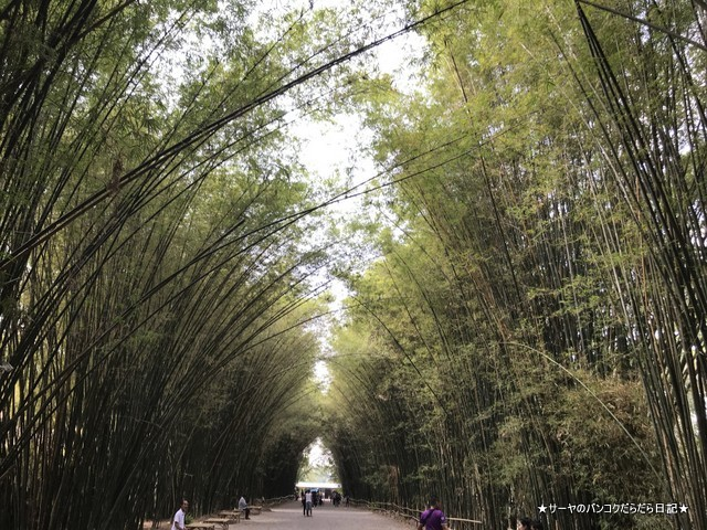 Chulabhorn Wanaram temple ナコンナヨック 嵐山 (11)