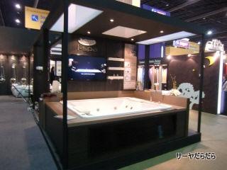 20111219 Baan Lae Suan Fair 2011 3