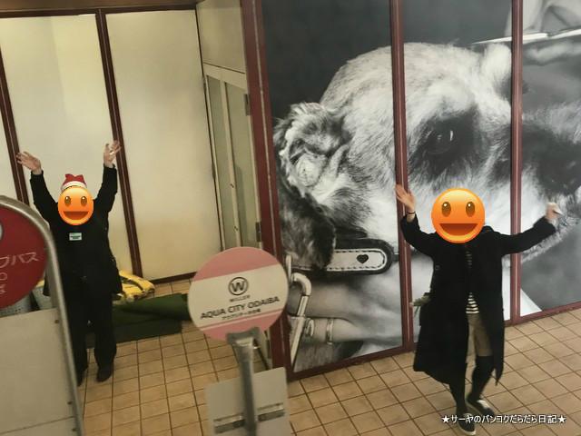 水陸両用バスTOKYO NO KABA hippo BUS