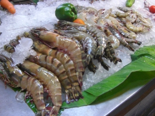 20091023 Karon Sea food 6