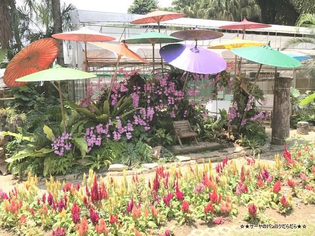 Mae Fah Luang Garden シーナカリン チェンライ (12)