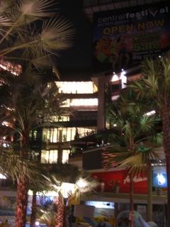 20090224 central festival 1