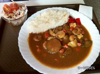 20110526 J curry 2