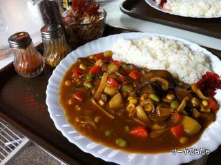 20110526 J curry 3