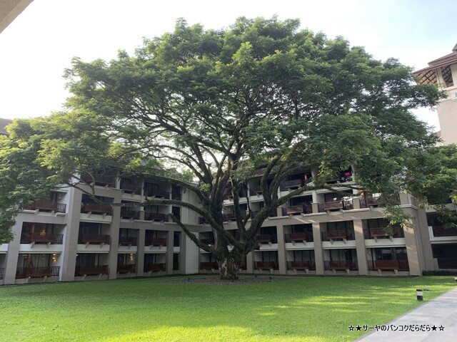 ル メリディアン チェンラーイ リゾート chiangrai resort (21)
