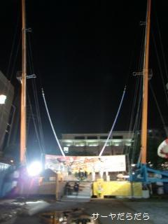 20100318 carnival 5