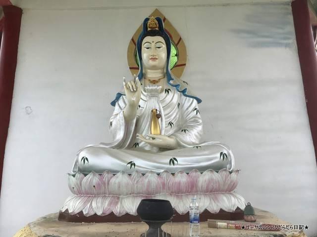カオタオ洞窟寺院 watthamkhaotao 亀 ホアヒン (7)