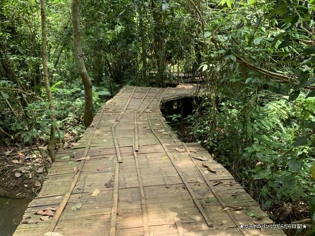 タムルアンクンナムナン非森林公園 Khunnam Nangnon (8)