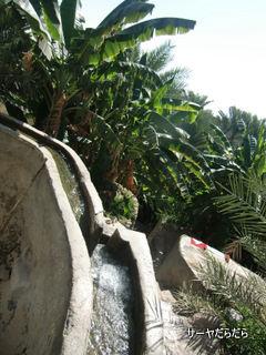 20120108 ファラジ(falaj) 2