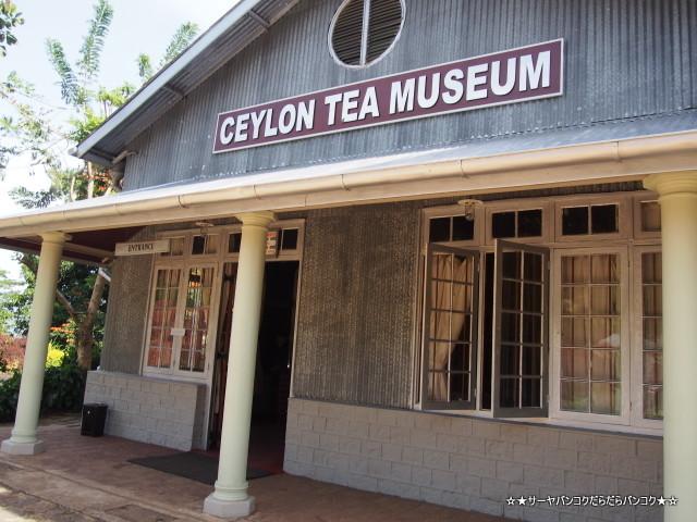 セイロン紅茶博物館 Ceylon Tea Museum Kandy キャンディ