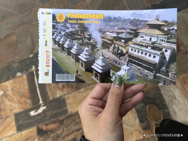 パシュパティナート Pashupatinath 世界遺産 (6)