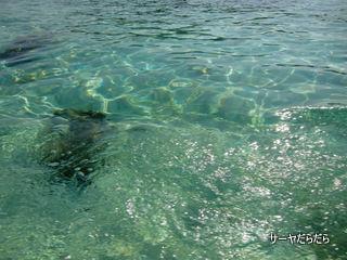 20120404 lipe island 6