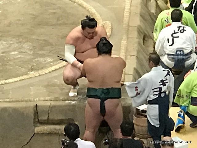 大相撲 秋場所 両国 千秋楽 伊勢ノ海部屋 (6)