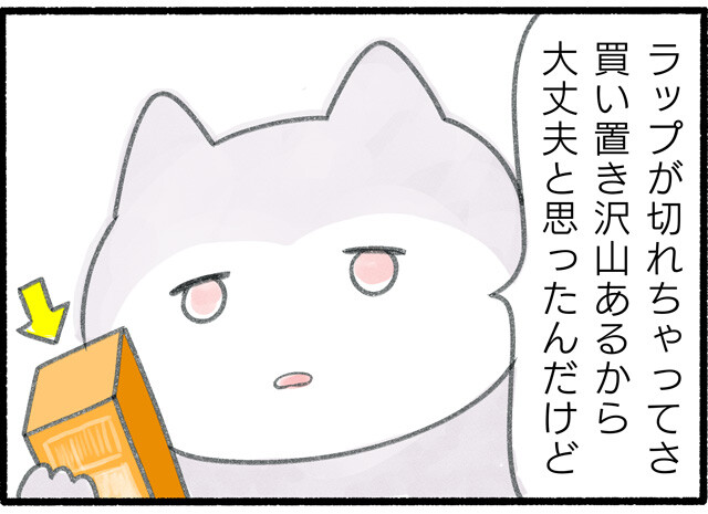 ホイル_03