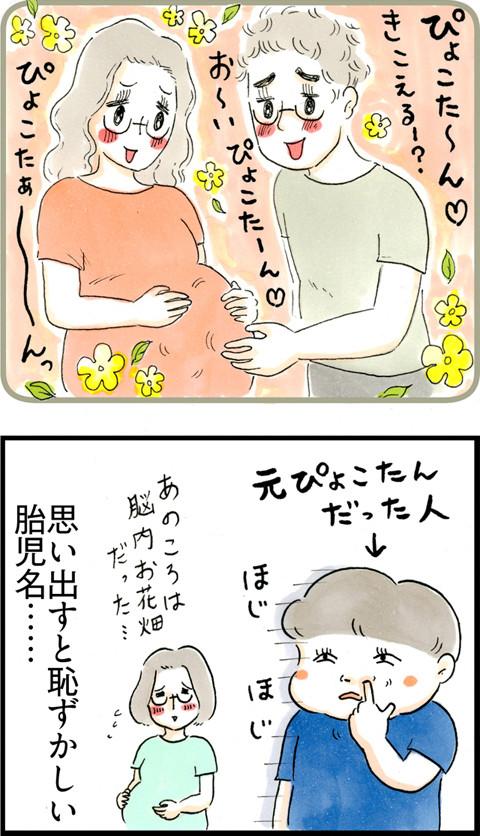 663胎児名ぴょこたん_02