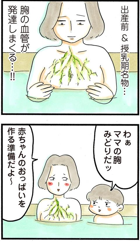 712胸の血管_01