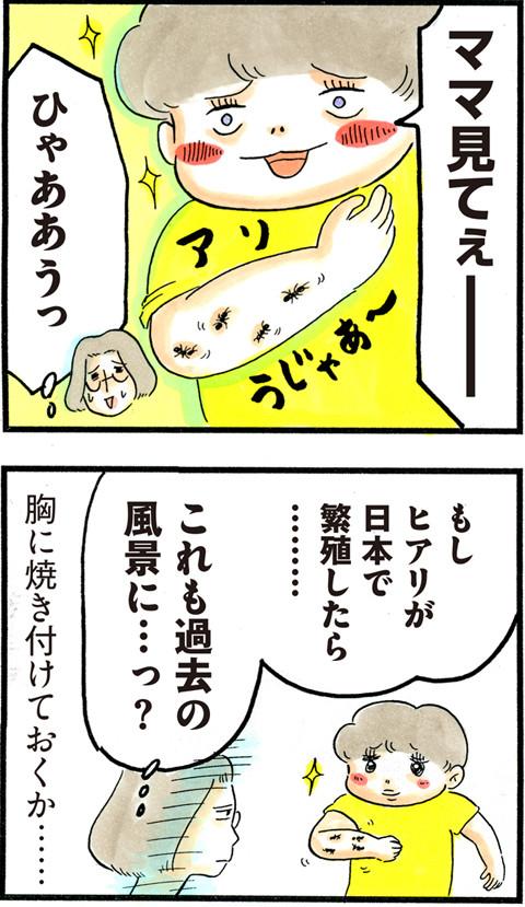 711ヒアリ怖い_02