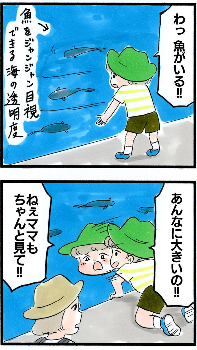1104式根島に来たよ!!_03