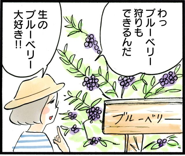 1362ブルーベリー食わず嫌い_01