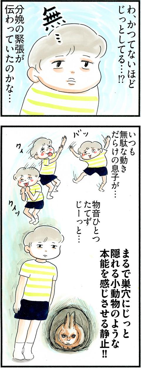 795立ち会った息子_03