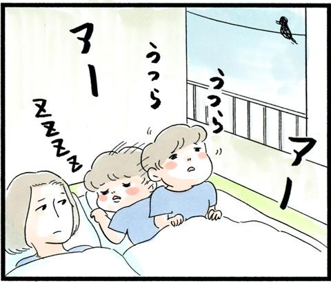 1018明け方うるさい_03