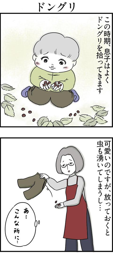 110どんぐり_01