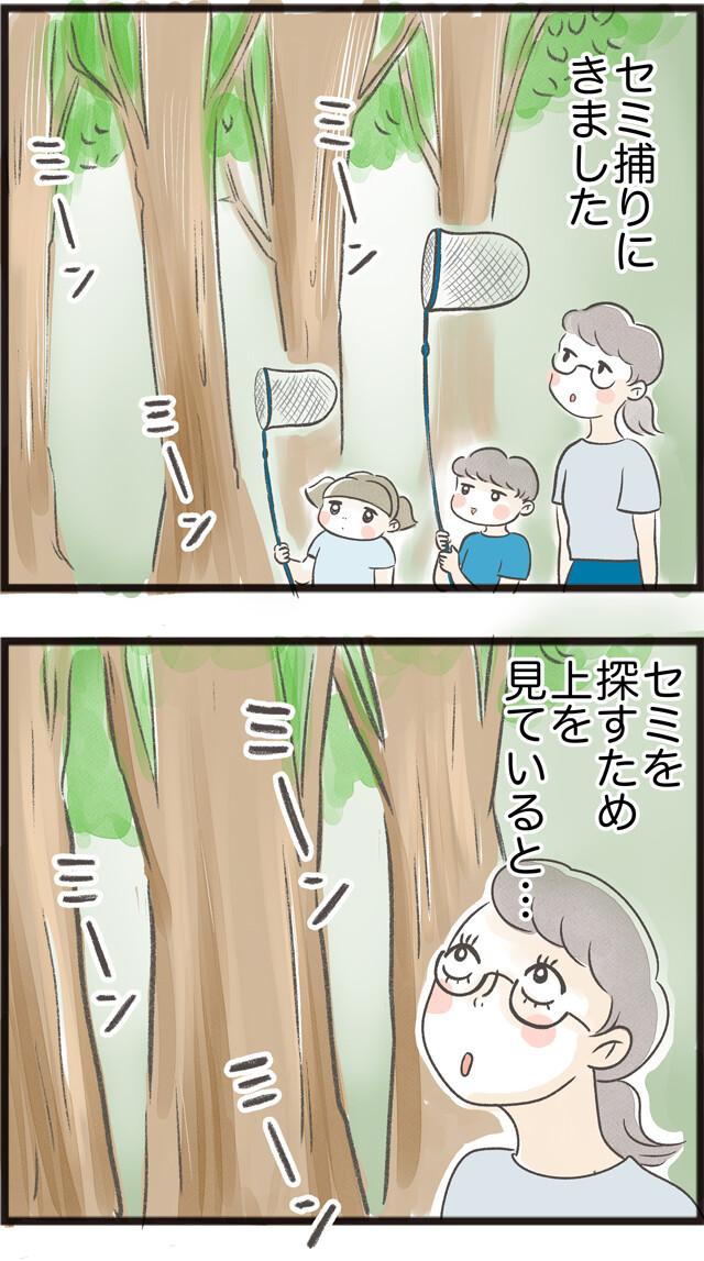 セミ捕りのすすめ_01