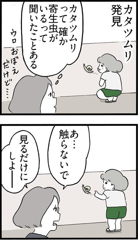 337カタツムリと寄生虫_01