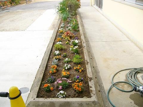 ボランティアで花壇の整備