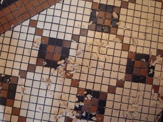 ロングバーの床
