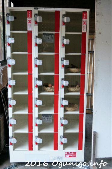 杖立の自動販売機