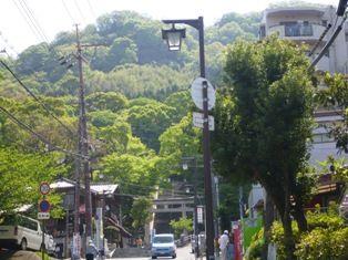 萌える緑 飯盛山から生駒の山行