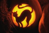 halloween0902