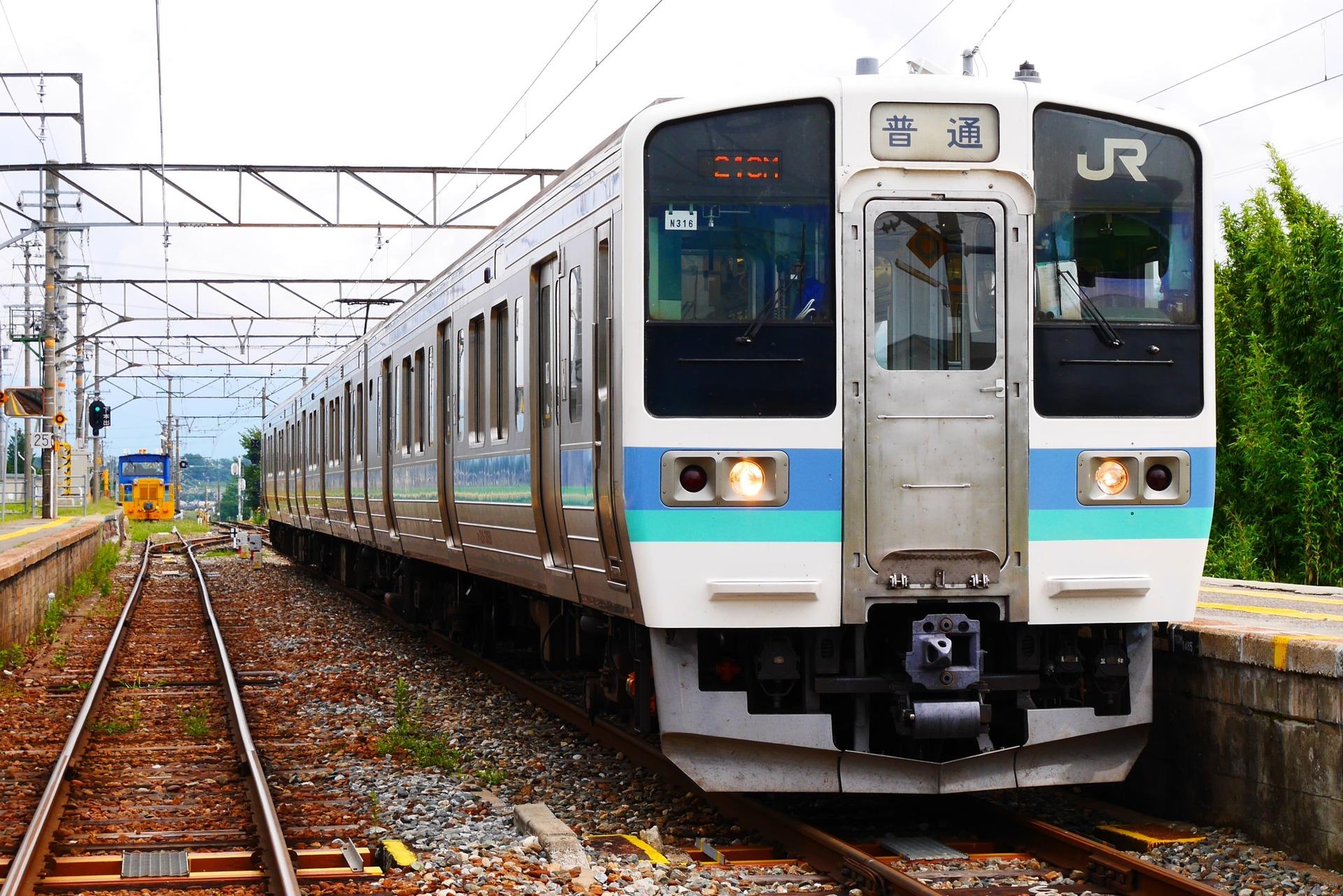 P1000809 (3)