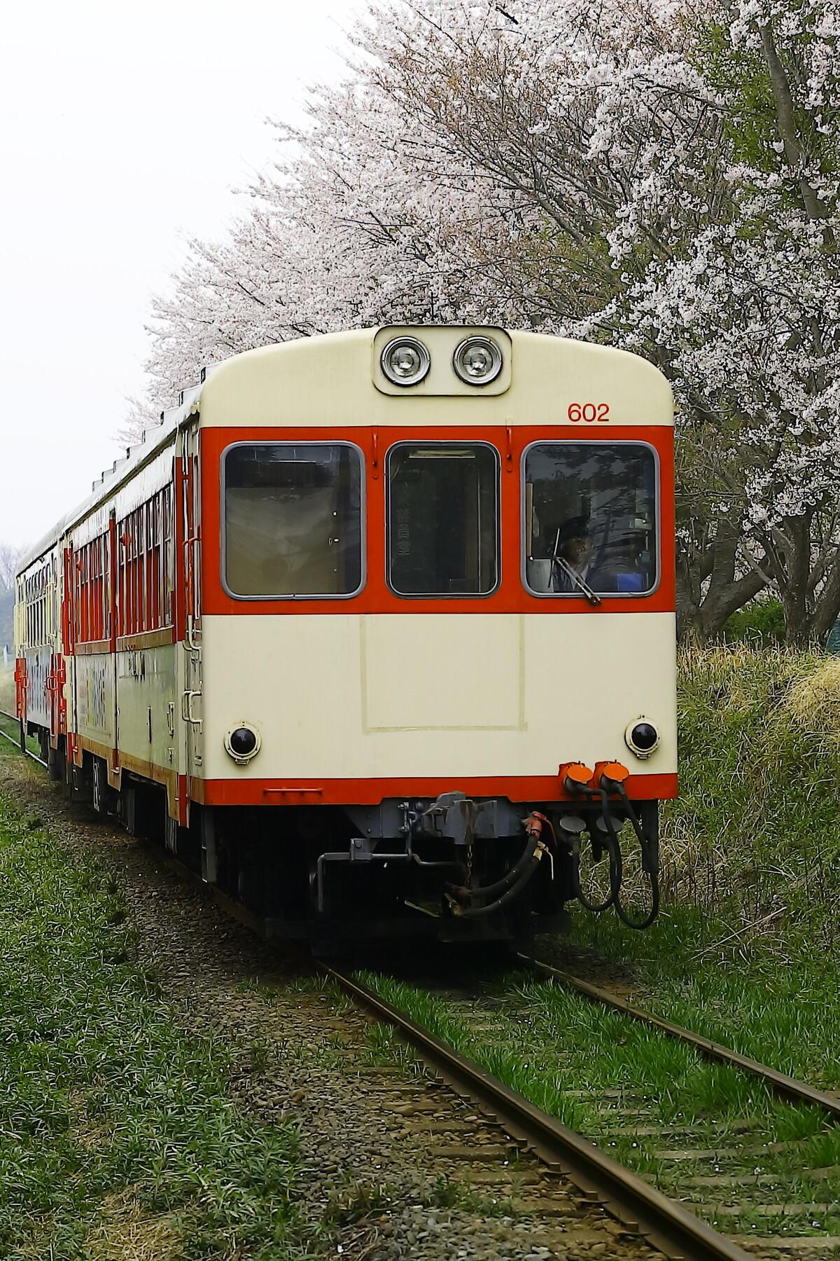 C9DA1630