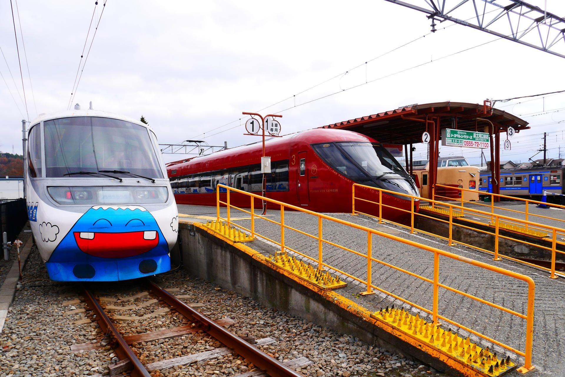 P1100246 (2)