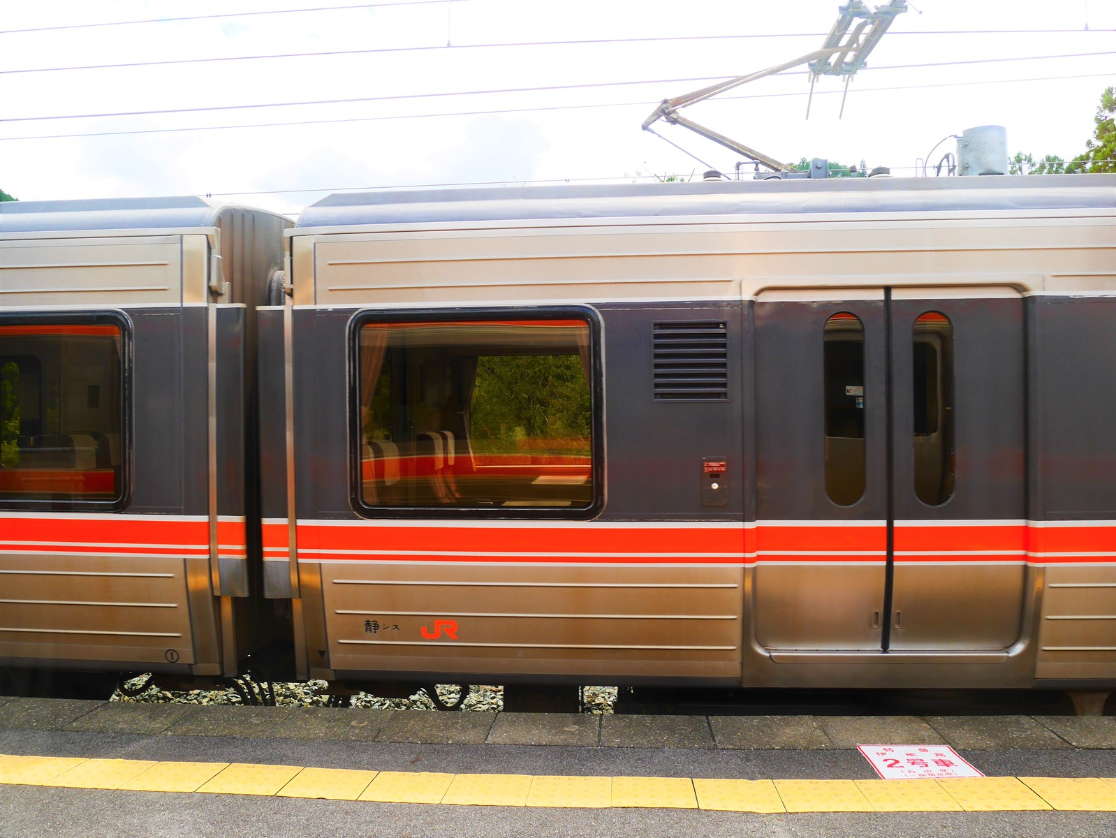 P1000688 (2)