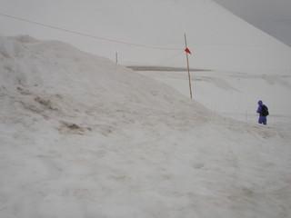 雪を散策 税理士川越 大林 茂樹