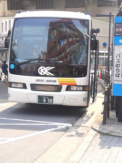 DSC_1065
