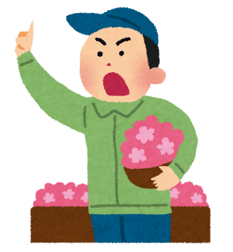 seri_flower