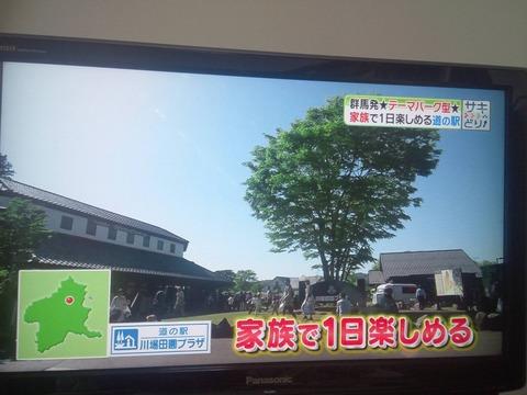 道の駅04