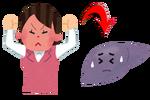 怒り-肝臓