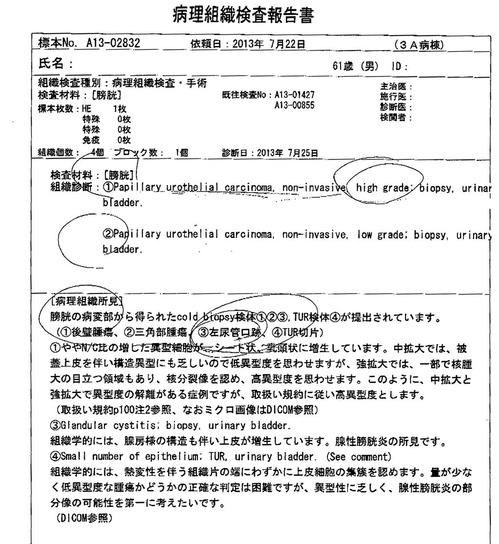 20130722病理組織検査報告書