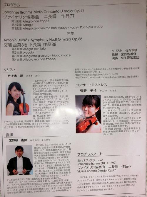 violinist3080