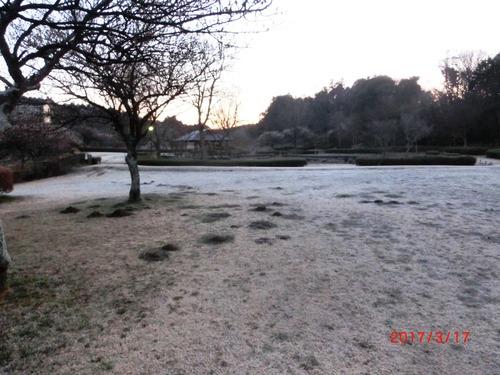 霜1826