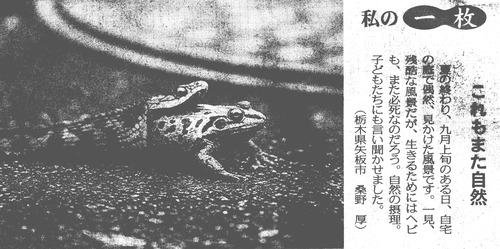 161102蛙蛇