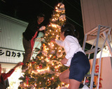 クリスマスツリー製作